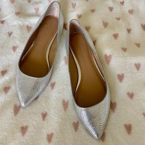 Banana Republic Metallic Silver Flats 5.5